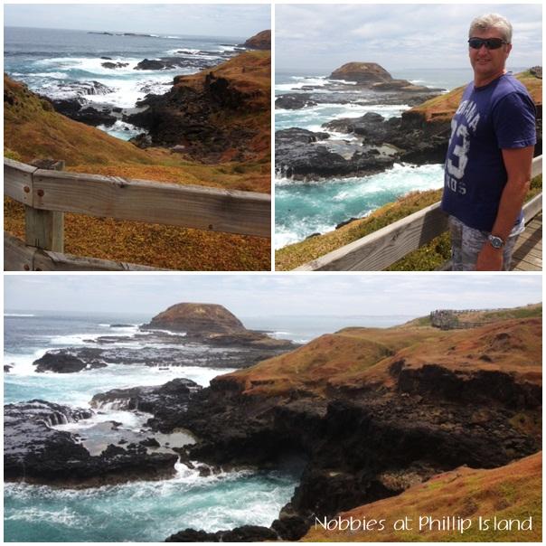 Phillip Island montage1