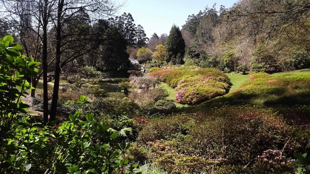 National Rhododendron Gardens1