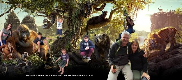 hemingway-zoo